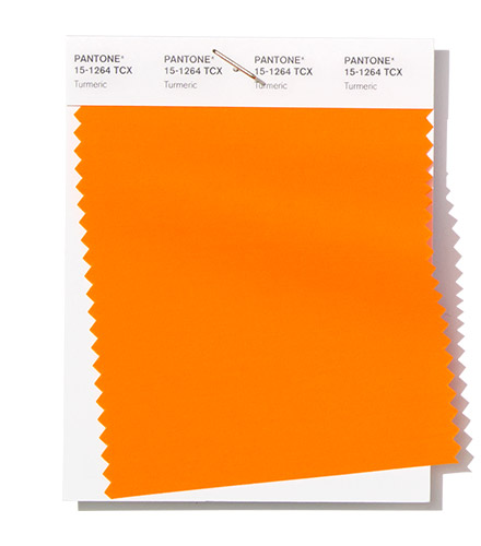 pantone-fashion-color-trend-report-new-york-spring-summer-2019-swatch-turmeric